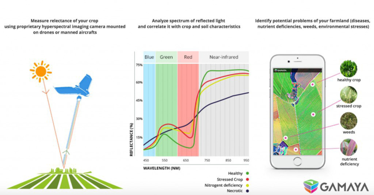 Making Agriculture More Efficient with Hyperspectral Imaging