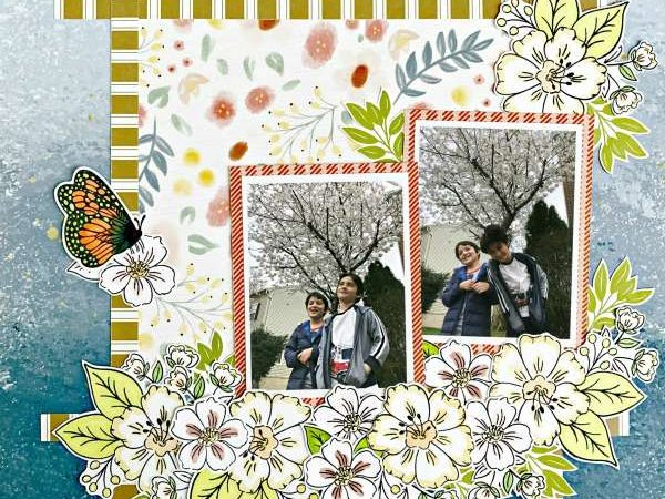 Tree blossom layout – scrap booking